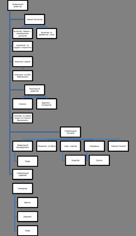 Анализ организационной